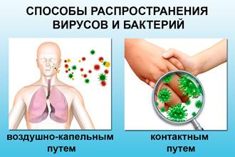 Способы распространения инфекции
